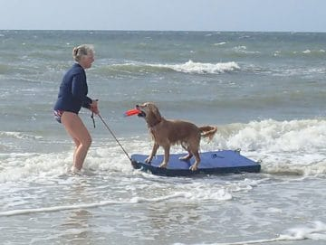 woman with dog on a surfboard