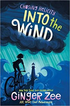 Into the Wind book cover