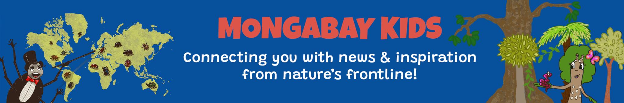 Mongabay Kids banner